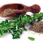 Какие травы можно применять при сахарном диабете? Как снизить сахар в крови?